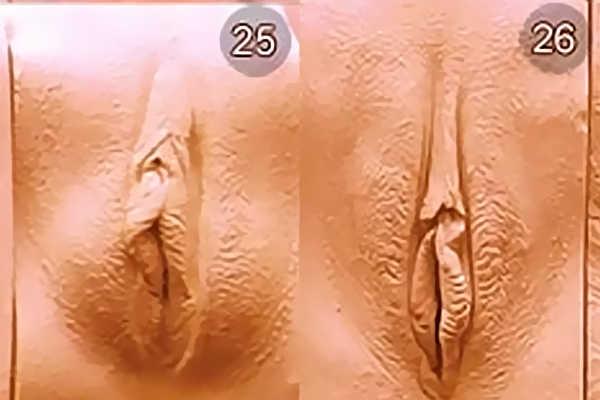 Разновидность женских писек. Вид 25-26