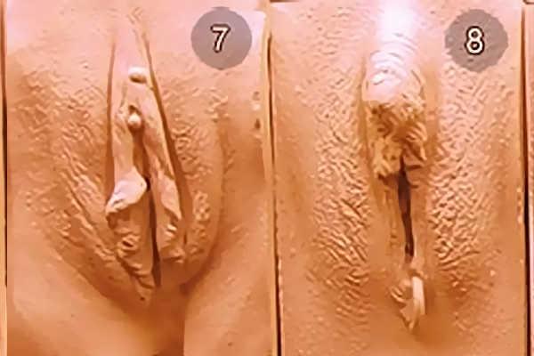 Виды женских писек. Тип 7-8