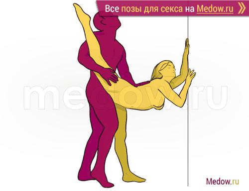 Секс С Гимнасткой В Попу