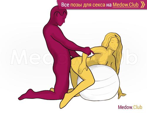 Поза для секса #374 - Осеменитель (догги, мужчина сзади, на коленях). Камасутра Фото, Картинки