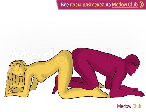 Поза для секса #256 - Обратный догги (догги, мужчина сзади, на коленях, перевернутая). Камасутра Фото, Картинки